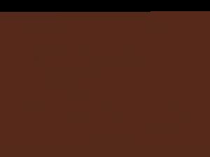 Cronograma-Acttiv